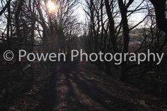 Landscape photograph sunlight glaring by LovingWhisperPhotos