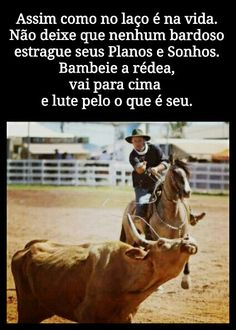 Gaucho, Country Life, Horses, Animals, Quotes Motivation, Positive Words, Funny Memes, Dreams, Messages