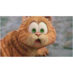 The Garfield Movie