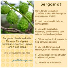Ways to Use Bergamot Essential Oil July 31, 2013 By Kimberly