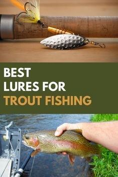 This trout fishing article covers The Best Rainbow Trout Lures, Best Trout Lures For Lakes and Lake Trout, The Best Trout Jigs and Best Trout Lures For Streams And Rivers. Lake Trout Lures, Best Trout Lures, Trout Fishing Lures, Rainbow Trout Lures, Best Fishing Bait, Trout Magnet, Bait And Tackle, Fishing Tricks, Cooking Fish