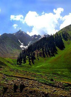 Lalazar, Kaghan Valley , Pakistan.