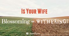 Is Your Wife Blossoming or Withering Because of You? - JackieBledsoe.com - 5 ways husbands can help their wives blossom