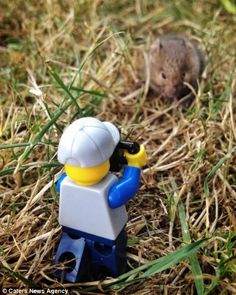Encounters of the furred kind: Leg turns wildlife photographer and takes a picture of this mouse