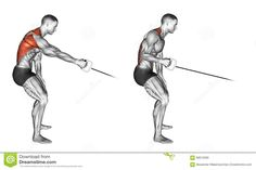 Exercising. Standing One Arm Cable Row - Download From Over 61 Million High Quality Stock Photos, Images, Vectors. Sign up for FREE today. Image: 68612569