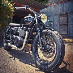 Triumph Bonneville Dandy Bonnie