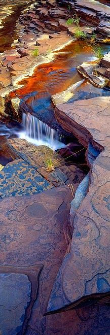 Nature's patterns...National Park - Kalamina Gorge, Karijini, Western Australia - Explore the World with Travel Nerd Nici, one Country at a Time. http://TravelNerdNici.com