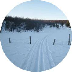 Type tur: Ski Anbefalt turperiode: Vinter Toppunkt: 954 moh. Total stigning:265 hm. Primærfaktor: 248 m. Tidsbruk (én vei): 1 t Antall km (én vei): 2,7 km. Svarthaugen rager bare 954 moh. men en får likevel følelse av å være høyt til fjells. Skiløypen her blir tråkket så fort det er kommet nok snø med snøscooter. Klikk på bildet for full beskrivelse av skituren! Snow, Tips, Outdoor, Outdoors, Outdoor Games, The Great Outdoors, Eyes, Let It Snow, Counseling