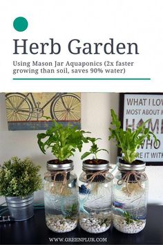 nice 3 Mason Jar Aquaponics Kit - Organic, Sustainable, Fish Hydroponics Herb Garden (WITHOUT JARS) Shocker! How To Launch Your Own Woodworking Business For Under . Hydroponic Gardening, Organic Gardening, Container Gardening, Gardening Tips, Aquaponics Plants, Aquaponics Greenhouse, Organic Hydroponics, Indoor Aquaponics, Indoor Greenhouse