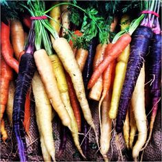 Beautiful organic carrots at the Queen Victoria Market today