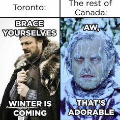 Suck it up, Toronto Canadian Memes, Canadian Humour, Canadian Things, I Am Canadian, Canadian Girls, Canada Jokes, Canada Funny, Canada Eh, Stupid Funny Memes