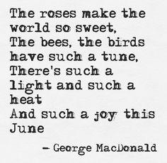 June Days, December, George Macdonald, Hello June, Lazy Summer Days, Bee Friendly, Purple Garden, Months In A Year, 12 Months
