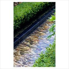 GAP Photos - Garden & Plant Picture Library - Pebble lined rill in the walled garden at Alnwick Castle - GAP Photos - Specialising in horticultural photography