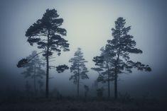Dark moments by HeikoGerlicher #design