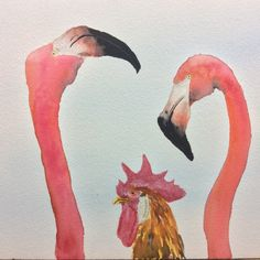 """""""Unlikely Friends 1"""" I love the flamingos' expressions as they see the intruding chicken!"""