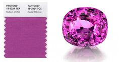 """Pantone's Colour of the Year 2014 """"Radiant Orchid"""""""