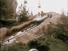 Walt Disney on the Matterhorn bobsleds. | 16 Heartwarming GIF Sets Of Disneyland That Will Transport You To The '60s