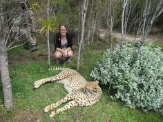 Breanna Sands at Drakenstein Lion Park in South Africa