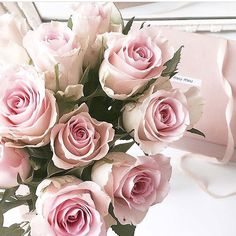 """148 Likes, 4 Comments - @cheyannesorelle on Instagram: """"Throwback pretty pink roses picture My absolute favourite! Im just too tired and lazy after a…"""""""