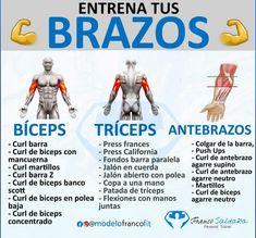 Biceps, Gym, Memes, Bench Press, Biceps Curl, Training, Exercises, Life, Meme