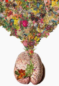 beautiful mind ...