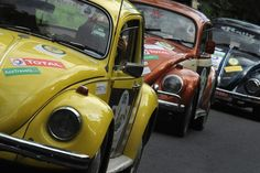 volkswagen beetle from the 60's - Google Search