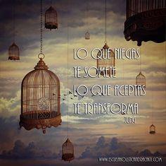 Boletin Semanal: El Falso Perdon. Leelo Aqui! http://us9.campaign-archive1.com/?u=5f114d60501e627a22dad1b59&id=0e31c3ed8e&e=1bbf8c8deb