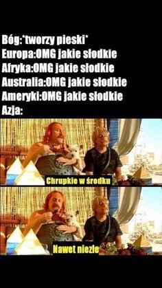 wszystkie memy z neta :v # Humor # amreading # books # wattpad Very Funny Memes, True Memes, Wtf Funny, Hilarious, Avatar Ang, Polish Memes, Weekend Humor, Funny Mems, Everything Funny
