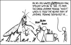 Etymology Cartoon