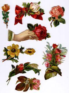#Victorian #scraps  #ephemera #chromograph #lithograph #floral #roses