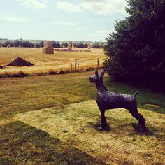 July Ballymaloe Garden Art, Giraffe, Goats, Gardens, Summer, Animals, Felt Giraffe, Summer Time, Animales