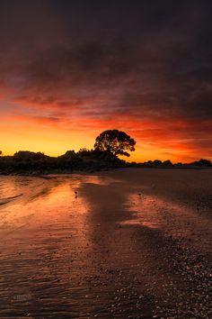 Summer sunrise on  the Mt. Maunganui main beach, Bay of Plenty, New Zealand