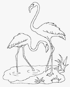 Home Decorating Style 2020 for Coloriage Flamant Rose, you can see Coloriage Flamant Rose and more pictures for Home Interior Designing 2020 at Coloriage Kids. Flamingo Craft, Flamingo Color, Flamingo Painting, Bird Coloring Pages, Coloring Books, Drawing Lessons, Drawing Techniques, Bird Template, Wreath Drawing