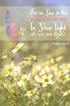 Psalm 36:9 ~ For in You is the Fountain of life. In Your Light do we see light.