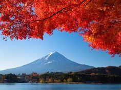 autunno Giappone