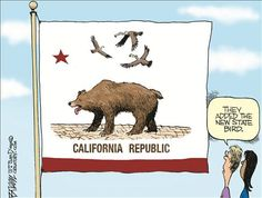 DEFEAT OBAMA TOONS: The Rise of the California Condor (buzzard) and th...