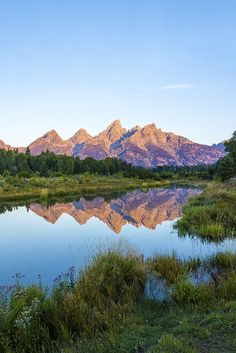 The Tetons Reflected On Schwabachers Landing - Grand Teton National Park Wyoming by Brian Harig Grand Teton National Park, National Parks, Best Landscape Photographers, Teton Mountains, Scenic Photography, Cool Landscapes, So Little Time, Wyoming, Beautiful Places
