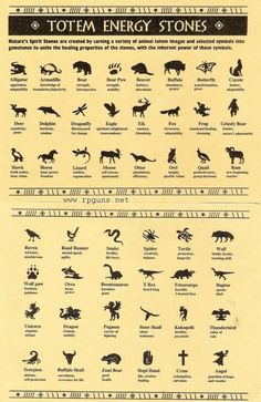 Spirit Animal Meanings | Native American Animals And Meanings Spirit totem animals: totem