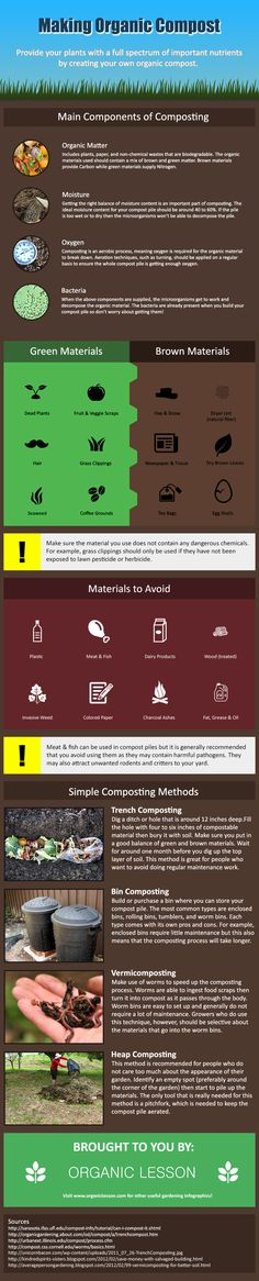 Infographic on creating organic compost