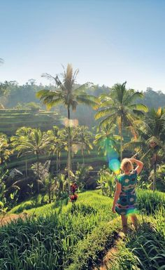 The popular Tegalalang Rice Terraces near Ubud | One of 10 Top Things To Do In Bali Indonesia | via /Just1WayTicket/