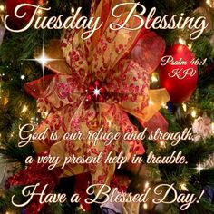Tuesday Blessings quotes quote days of the week blessings tuesday tuesday quotes happy tuesday tuesday quote Christmas Blessings, Christmas Quotes, Christmas Greetings, Christmas Time, Christmas Bulbs, Merry Christmas, Tuesday Quotes Good Morning, Happy Tuesday Quotes, Morning Quotes