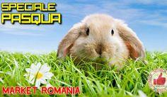 Speciale PASQUA Da Market Romania http://affariok.blogspot.it/