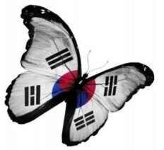 Korean flag butterfly