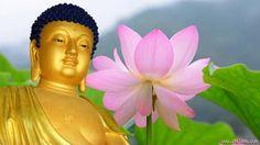 66 lời Phật dạy về cuộc sống ai cũng nên đọc ít nhất 1 lần trong đời   Những lời Phật dạy về về cuộc sống dưới đây vô cùng có ý nghĩa dù bạn tin hay không cũng nên sống hướng đạo để cuộc sống an yên.  Ảnh minh hoạ  Dưới đây là 66 lời Phật dạy về cuộc sống những câu nói khá hay của Phật giáo. Các bạn mong muốn tìm hiểu đạo Phật nên đọc và suy ngẫm sẽ giúp tâm thanh tịnh hơn giữa bộn bề lo toan trong cuộc sống.  Sở dĩ người ta đau khổ chính vì mãi đeo đuổi những thứ sai lầm.  Nếu anh không…