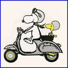 Snoopy and Woodstock riding a Vespa. Charlie Browns World of the Peanuts. Snoopy Et Woodstock, Snoopy Love, Happy Snoopy, Peanuts Cartoon, Peanuts Snoopy, Charles Shultz, Bd Art, Snoopy Quotes, Joe Cool
