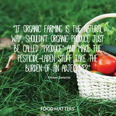 Think about it! Vegetarian Recipes Easy, Real Food Recipes, Food Tips, Health And Nutrition, Health Fitness, Gut Health, Matter Quotes, Healthy Lifestyle Quotes, Holistic Nutritionist