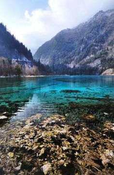 Five Flowers Lake at Jiuzhaigou National Park, Sichuan. One of the natural wonders of China.
