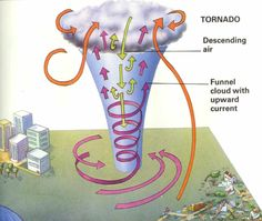 Can't explain the weather without talking about tornado's! Helpful diagram / description about tornado's for Grade 5 Science.