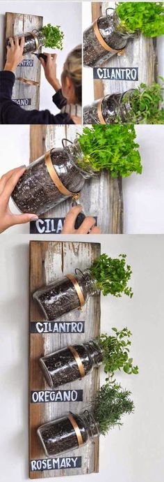 Best DIY Projects : Even if you don't have a backyard or a spacious kitchen, you can have an herb garden using mason jars!