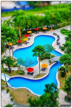 Large freeform pool with pool bridges